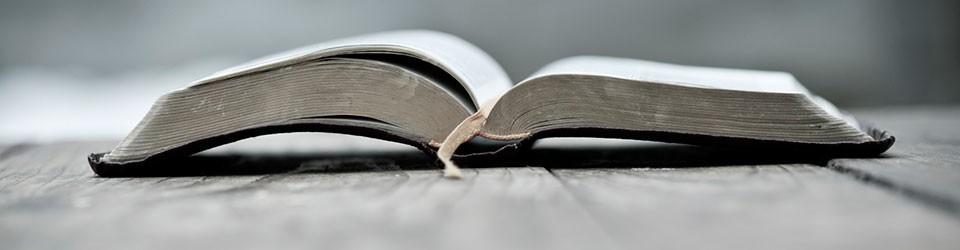 bible2-banner-960x250